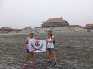 Avis Famille Fonciotto Chine