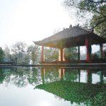 Longjing Resort