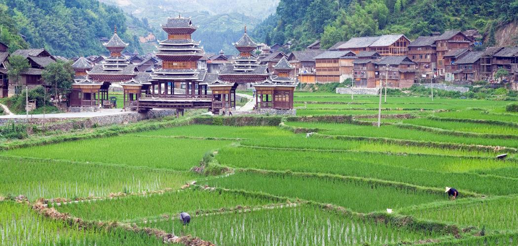 Famille Blanc – Randonnée au Guizhou