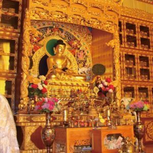 Musée de la médecine tibétaine - 藏文化博物馆