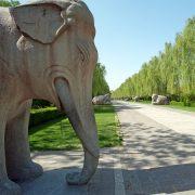 Pékin – Tombeaux Ming (1)