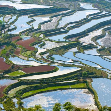 Colette et Jacques – Voyage au Sud Yunnan (7 jours)