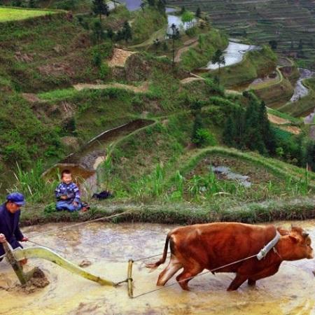 Nicolas – Voyage au Guizhou (7 jours)