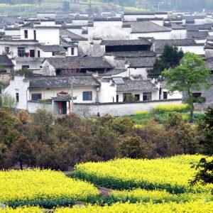 Hongcun – 宏村