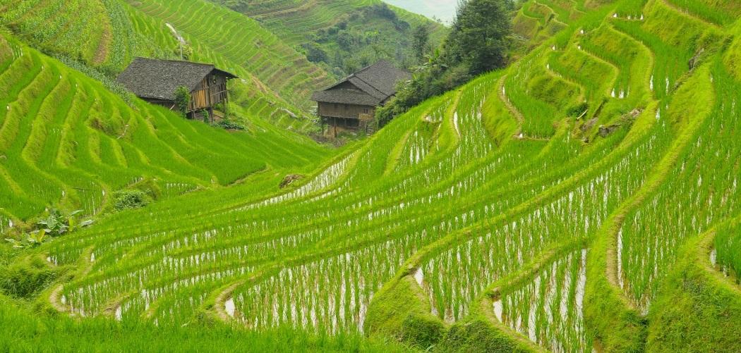 Famille Bertrand – Circuit Chine en Famille