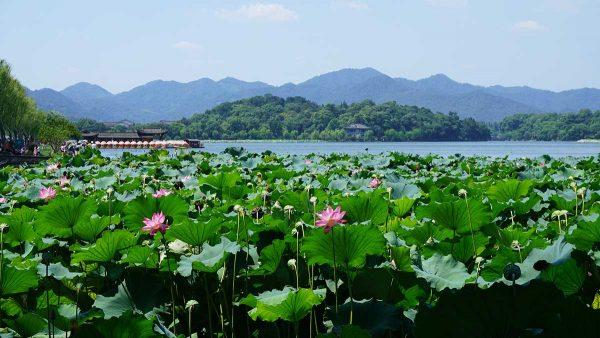 Lac Xi à Hangzhou