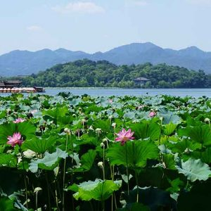 Le Lac Xi - 西湖