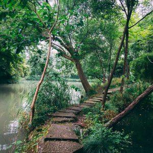 Parc National de Xixi 西溪国家湿地公园