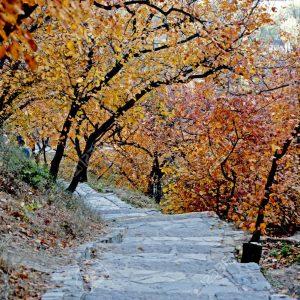 Parc des Collines Parfumées 香山公园