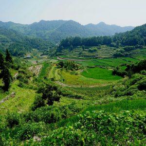 Chengkan et les rizières en terrasse de Lingshan