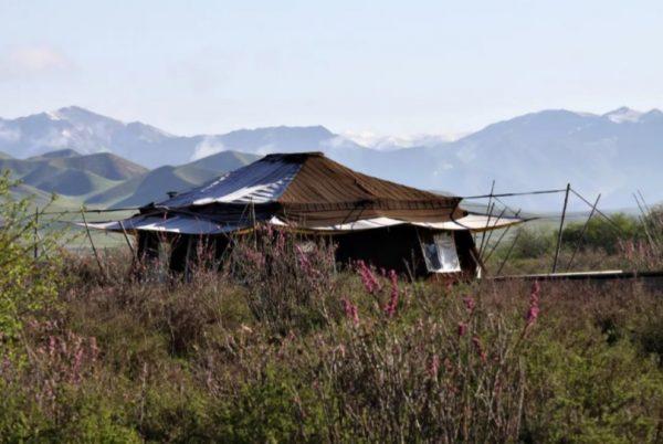 Norden Camp Xiahe tente 1_China Roads
